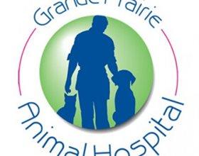 Animal Hospital Grande Prairie